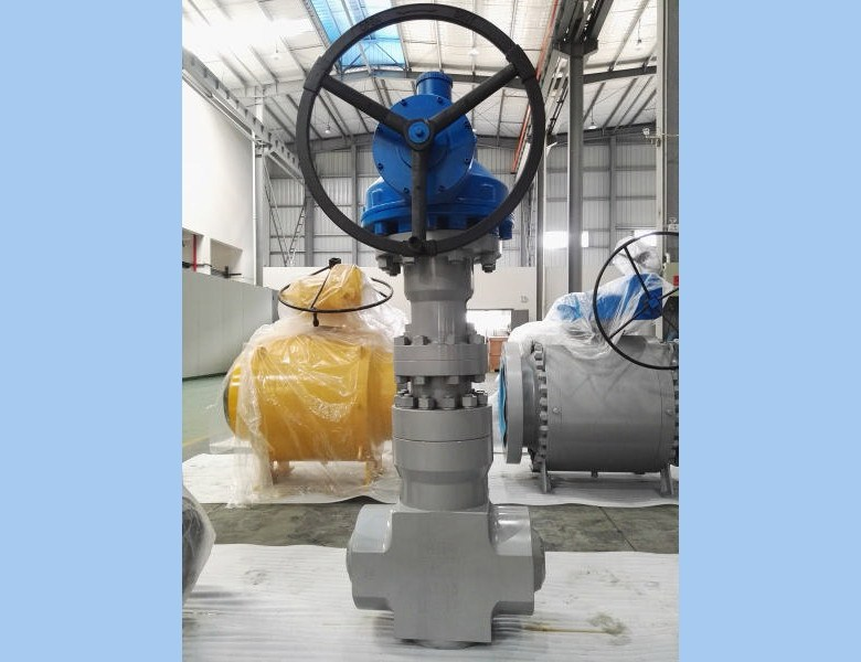 Power station gate valve